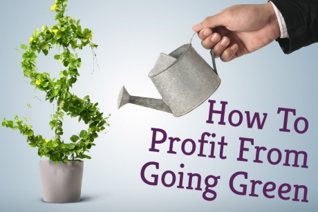 How To Profit From Going Green